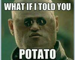 Meme Potato - funny potato meme potato best of the funny meme