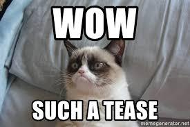Tease Meme - wow such a tease grumpy cat meme generator