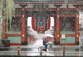 november tokyo tokyo area gets first november dusting of snow in 54 years the