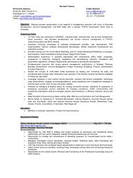 Staffing Recruiter Resume Resume Business Manager It Staffing Sales Business Development