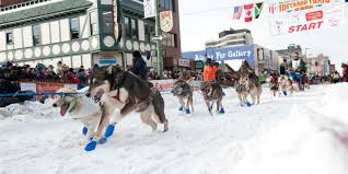 winter events visit anchorage