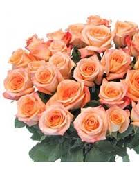 orange roses stem orange bouquet