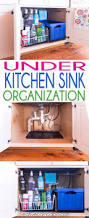 Bathroom Sink Organizer Ideas Under Kitchen Sink Organization Ideas Decorloft Co