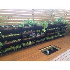 Box Garden Layout Kitchen Fresh Herb Garden The Kitchen Garden Herb Box Herb
