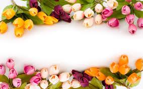 Wedding Flowers Background Tulipán Virág Csokrok Wallpaper Flowerhdwallpaper Levélpapír