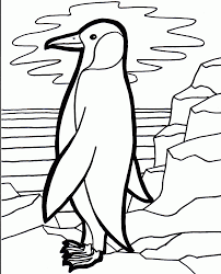 cute penguin coloring pages for your kids u2014 allmadecine weddings
