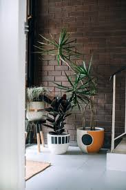 825 best home for the modern natural designer home images on