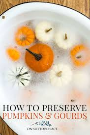 is albertsons open thanksgiving thanksgiving fall centerpiece ideas preserve pumpkin fall decor