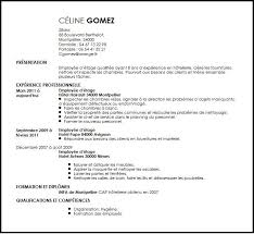 cv commis de cuisine debutant cv commis de cuisine 100 100 images what is sous chef jobption