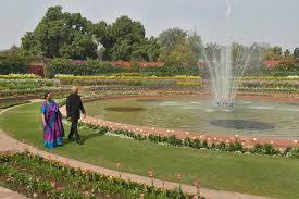 photos iconic mughal gardens of rashtrapati bhavan open for
