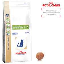 royal canin veterinary diet feline urinary medicanimal com