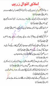 wedding quotes urdu islamic quotes in urdu tips in urdu