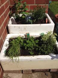 butler belfast sink herb garden can u0027t wait to plant my herbs in