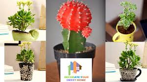 you should experience artificial plants for your home decoration