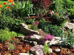 144 best mulch landscape rock u0026 wood images on pinterest