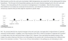 biology archive november 07 2016 chegg com