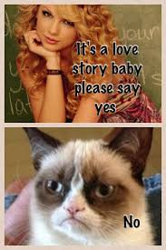45 best grumpy cat images on pinterest grumpy kitty cat memes