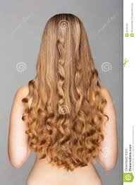 hairstyles back view only long hair stock image image of model facial blond 25762161
