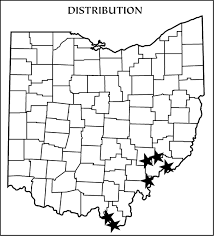 Southern Ohio Map by Ohio U0027s 15 Species Of Frogs And Toads At A Glance Trekohio
