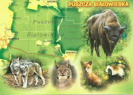 Pennsylvania Attractions Map by Maps Update 800800 Poland Tourist Attractions Map U2013 Poland