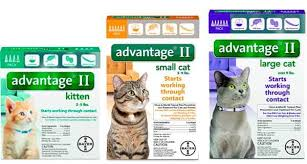 Last Longer In Bed Pills Over The Counter Best Flea Treatments For Cats Top 8 Drops Pills Sprays And A