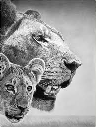 the 25 best pencil drawings of animals ideas on pinterest owl