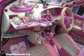 stupid human kitty car