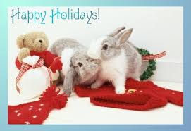 christmas bunnies care2 ecards free online animated greeting cards