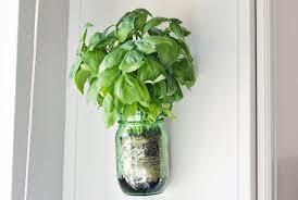 Indoor Herb Garden Light 7 Fresh Ideas For Indoor Herb Garden Homedecorxp Com