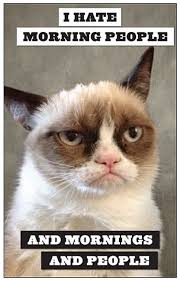 Morning People Meme - grumpy cat i hate morning people and mornings and people i
