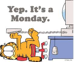 I Hate Mondays Meme - garfield i hate mondays meme the random vibez