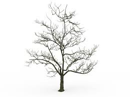 tree in winter 3d model 3ds max files free modeling