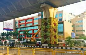vertical gardens bangalore going green take a look at the vertical gardens on