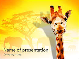giraffe powerpoint template u0026 backgrounds id 0000006110