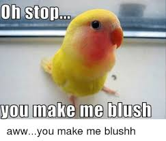 Aww Shucks Meme - 20 blushing memes that are way too cute to be resisted
