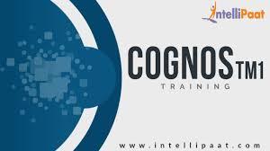 Cognos Sample Resume Cognos Tm1 Training Cognos Tm1 Tutorial Online Cognos Tm1