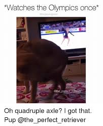 What Is An Exle Of A Meme - watches the olympics once perfect retriever oh quadruple axle i