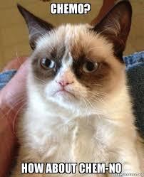 Chemo Meme - chemo how about chem no grumpy cat make a meme