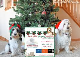 welcome to the 4 gifts for pets giveaway extravaganza my gbgv