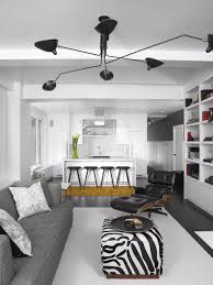 Livingroom Decor Ideas 17 Zebra Living Room Decor Ideas Pictures