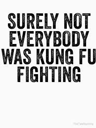 Fu Meme - not everybody was kung fu fighting funny kung fu meme sticker t