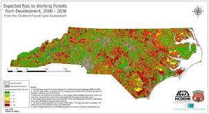 North Carolina forest images Teachers go back to school in the forest unc charlotte urban JPG