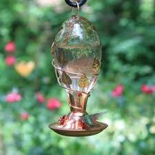 glass hanging hummingbird feeder wayfair
