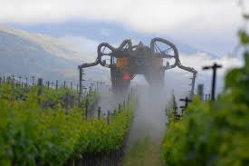 rise of the machines mechanization comes to the vineyards