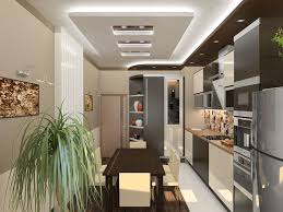 Galley Kitchen Design Idea Home Remedy Galley Kitchen Design In