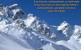 christian bible verses quotes strength