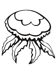 flower jellyfish coloring page download u0026 print online coloring