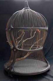 antique decorative bird cage i wouldn t want to keep a