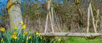 jc gardens and climbing frames swings and nests