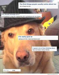 Ok Cupid Meme - okcupid dog meme collection